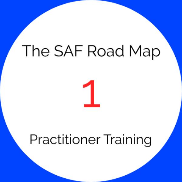 SAF Training Level 1